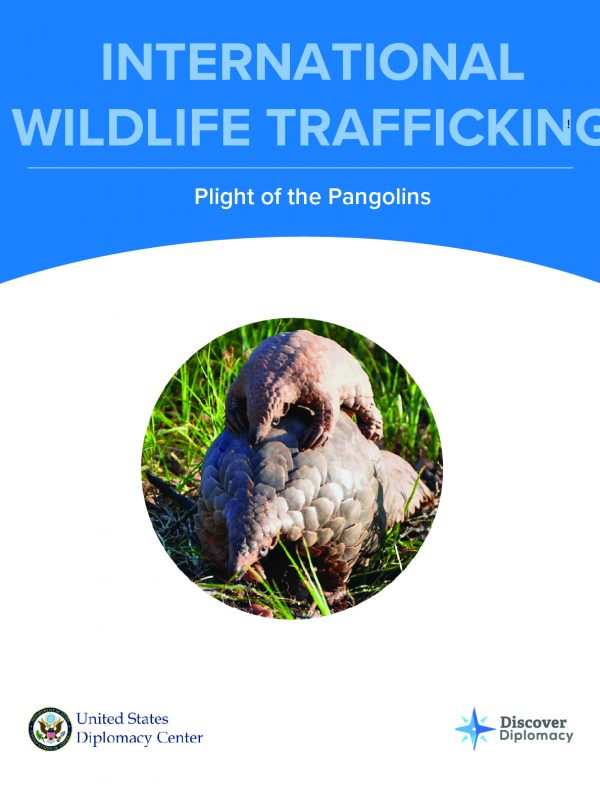 Wildlife Trafficking, Simulation, Diplomacy Center